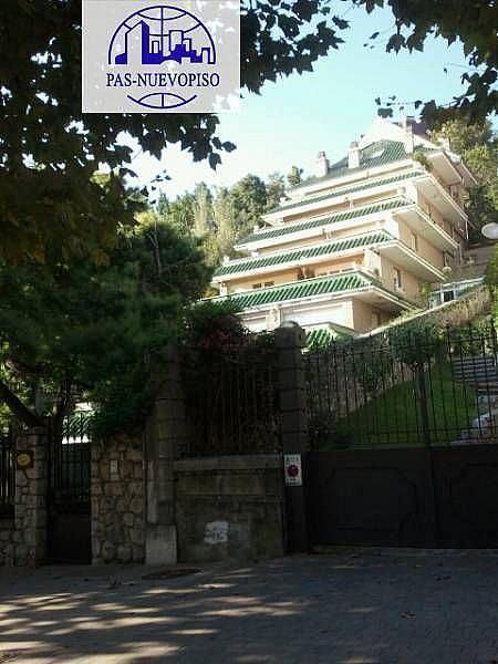 Foto - Piso en alquiler en calle Menéndez Pelayo, Centro en Santander - 355115150