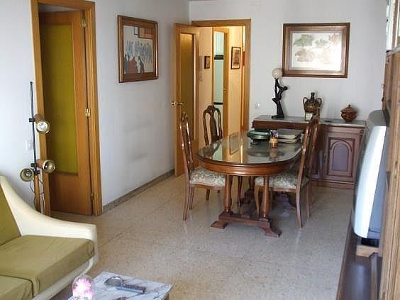DSCF0796 - Piso en alquiler en calle Camp de la Vila, Pont de Suert, El - 244007058