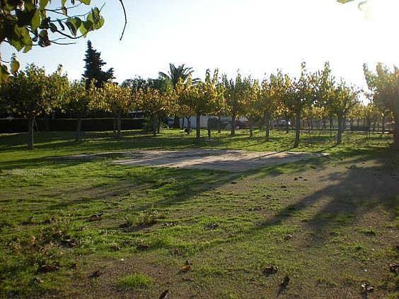DSCN0605 - Apartamento en venta en Torredembarra - 137137413