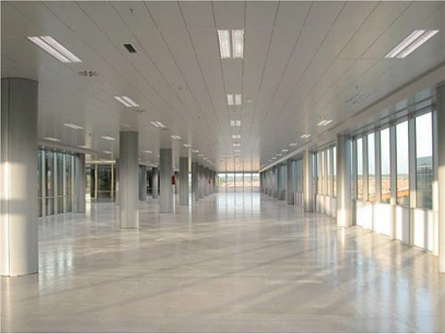 Oficina en alquiler en calle Ribera del Loira, Barajas en Madrid - 404961374