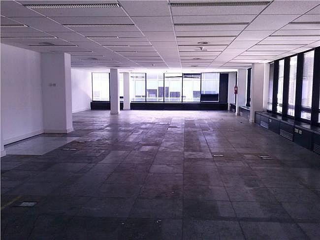 Oficina en alquiler en calle Ribera del Loira, Barajas en Madrid - 404961389