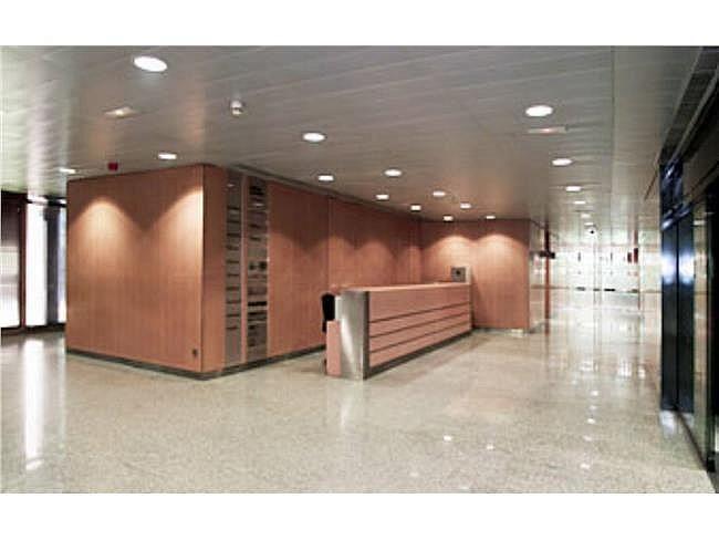 Oficina en alquiler en calle Eucalipto, Chamartín en Madrid - 333438485