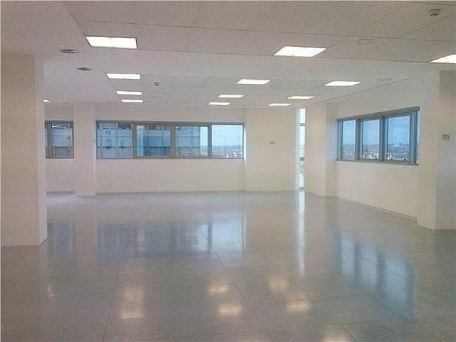 Oficina en alquiler en calle Eucalipto, Chamartín en Madrid - 333438488
