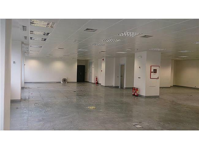 Oficina en alquiler en calle Paseo de Recoletos, Salamanca en Madrid - 374003139
