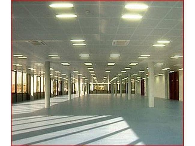 Oficina en alquiler en calle Campezo, San blas en Madrid - 404962562