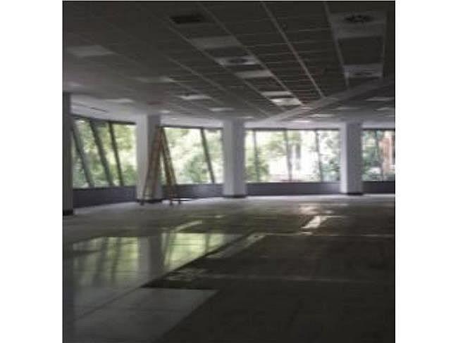 Oficina en alquiler en calle Génova, Chamberí en Madrid - 404963090
