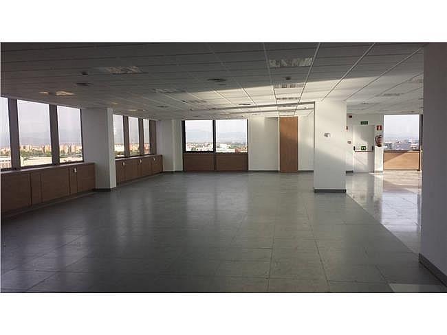 Oficina en alquiler en calle De Castilla, San Fernando de Henares - 404958005