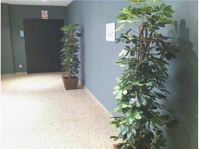 Oficina en alquiler en calle Bambú, Chamartín en Madrid - 315550823