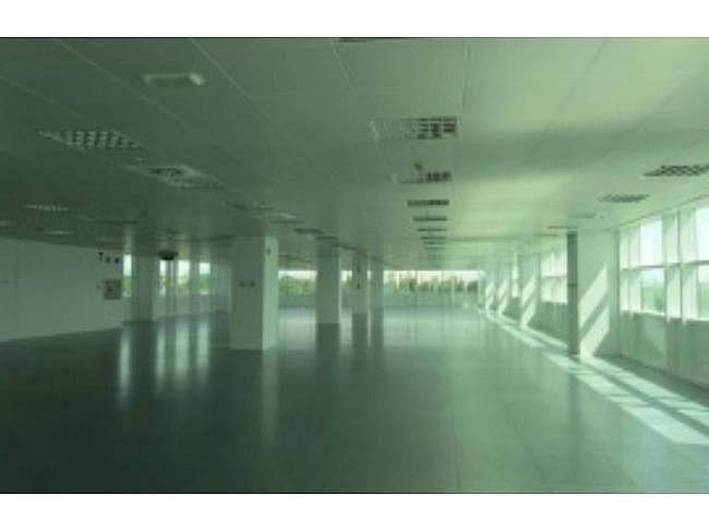 Oficina en alquiler en calle Josefa Valcarcel, Ciudad lineal en Madrid - 404957069