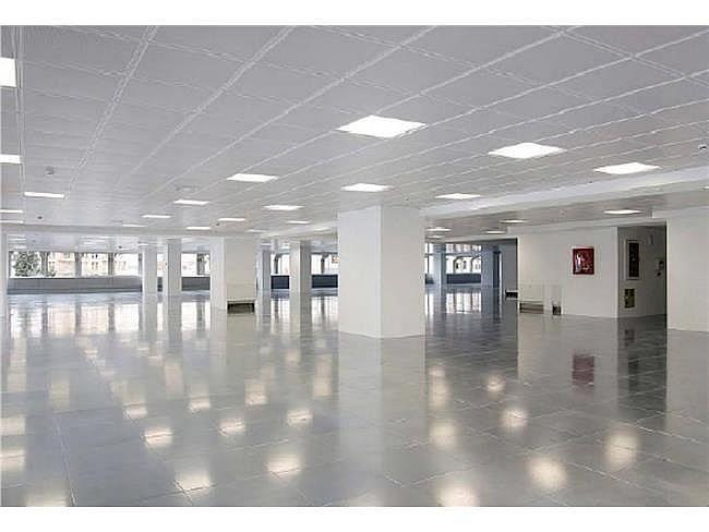 Oficina en alquiler en calle Manoteras, Sanchinarro en Madrid - 404957255