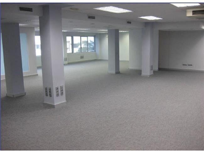 Oficina en alquiler en calle Manoteras, Sanchinarro en Madrid - 404957261