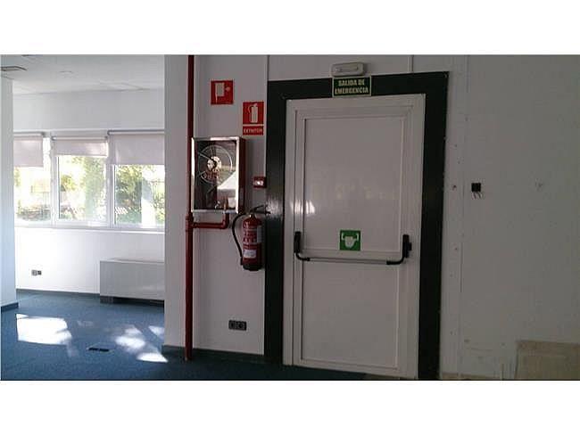 Oficina en alquiler en calle Condesa de Venadito, San Pascual en Madrid - 404958461