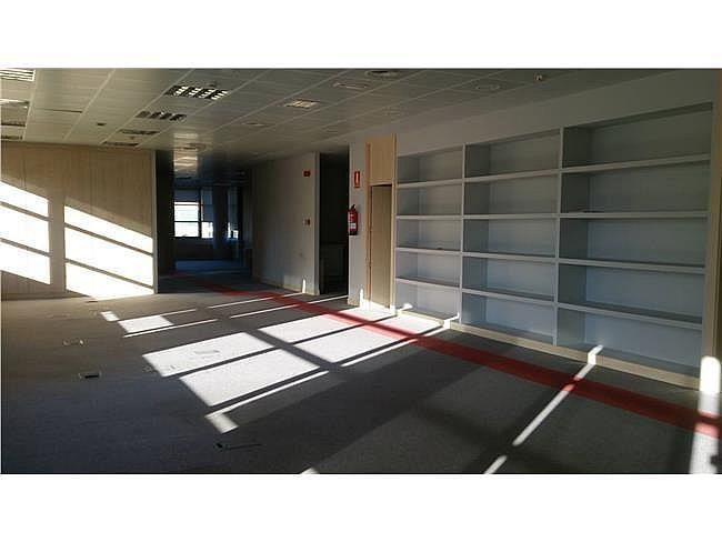 Oficina en alquiler en calle Barajas, Alcobendas - 404959064