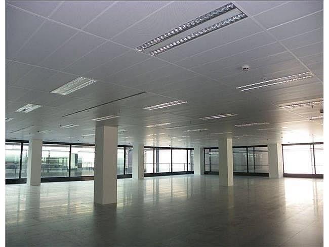 Oficina en alquiler en calle Jacinto Benavente, Dehesa de Navalcarbon-Montecillo en Rozas de Madrid (Las) - 404959205