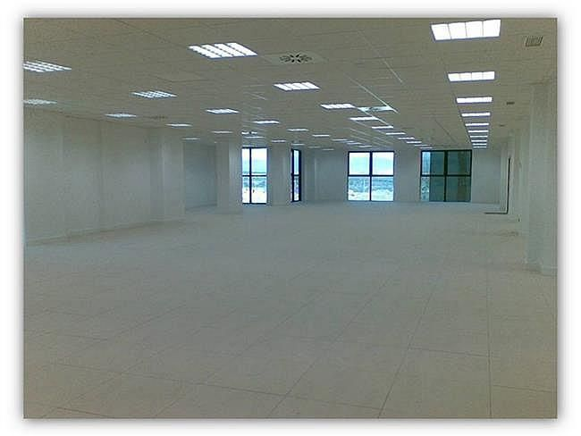 Oficina en alquiler en calle Ribera del Loira, Barajas en Madrid - 404959340