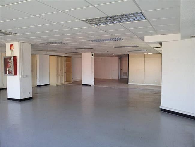 Oficina en alquiler en calle Ribera del Loira, Barajas en Madrid - 404959346