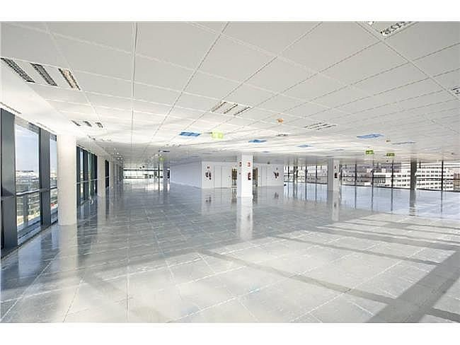 Oficina en alquiler en calle Ribera del Loira, Barajas en Madrid - 404959523