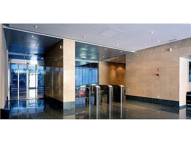 Oficina en alquiler en calle Ribera del Loira, Barajas en Madrid - 404959526