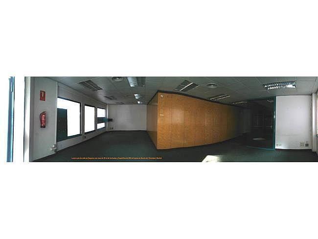 Oficina en alquiler en calle Francisco Rojas, Trafalgar en Madrid - 404960372
