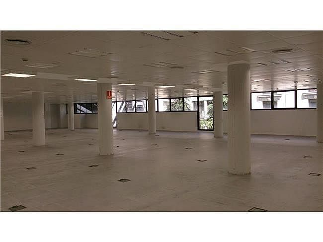 Oficina en alquiler en calle Arroyo de Valdebebas, Sanchinarro en Madrid - 390133119