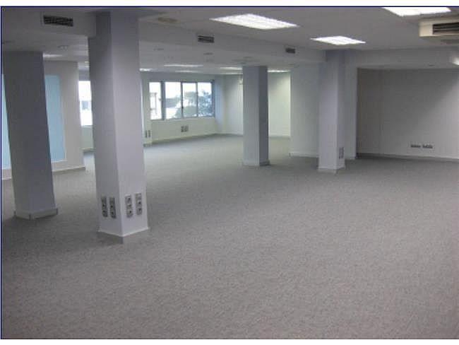 Oficina en alquiler en calle De Burgos, Chamartín en Madrid - 404960567