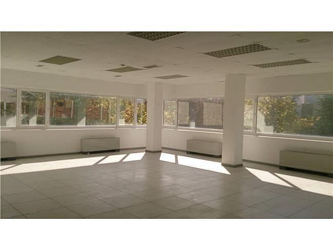 Oficina en alquiler en calle De Burgos, Chamartín en Madrid - 404960573