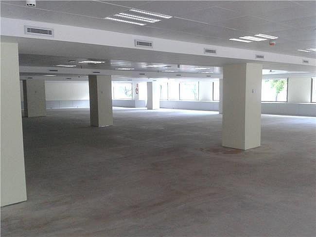 Oficina en alquiler en calle Saturno, Pozuelo de Alarcón - 404961092