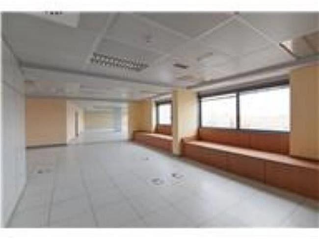 Oficina en alquiler en calle Lili Álvarez, Tres Cantos - 384509353