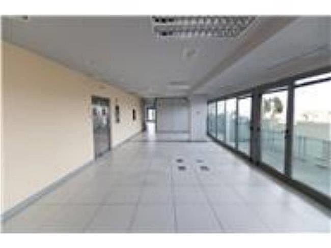 Oficina en alquiler en calle Lili Álvarez, Tres Cantos - 384509536