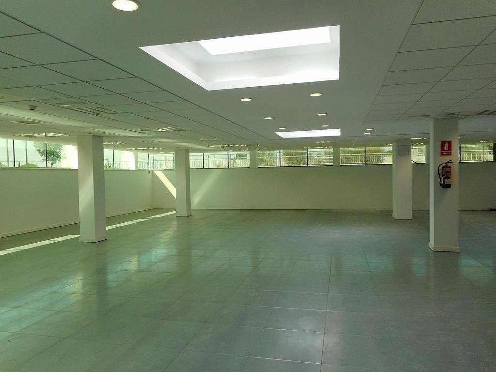 Oficina en alquiler en calle Cami de Can Camps, Sant Cugat del Vallès - 410829880