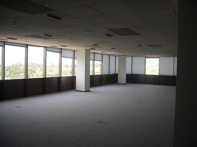 - Oficina en alquiler en calle Fructuos Gelabert, Sant Joan Despí - 233708641