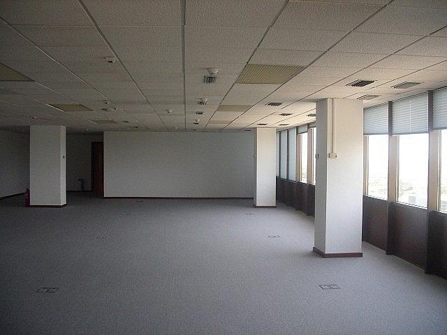 - Oficina en alquiler en calle Fructuos Gelabert, Sant Joan Despí - 233708647