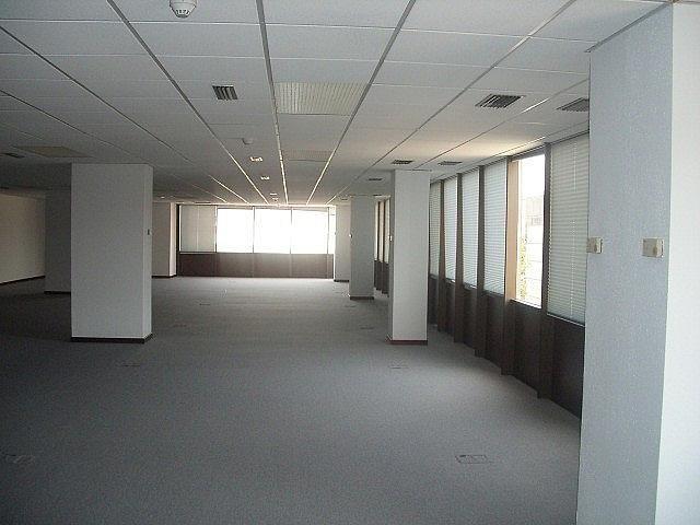 - Oficina en alquiler en calle Fructuos Gelabert, Sant Joan Despí - 233708653