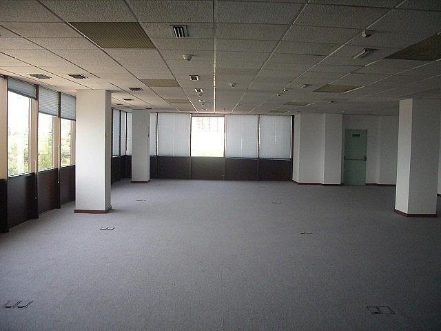 - Oficina en alquiler en calle Fructuos Gelabert, Sant Joan Despí - 244193808