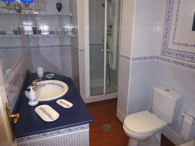 Baño - Piso en alquiler en calle San Sebastian, Zona Centro en Huelva - 90321679
