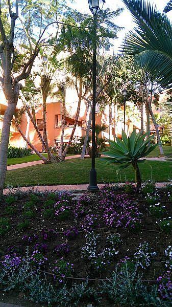 Jardín - Apartamento en alquiler de temporada en Nagüeles Alto en Marbella - 263761957