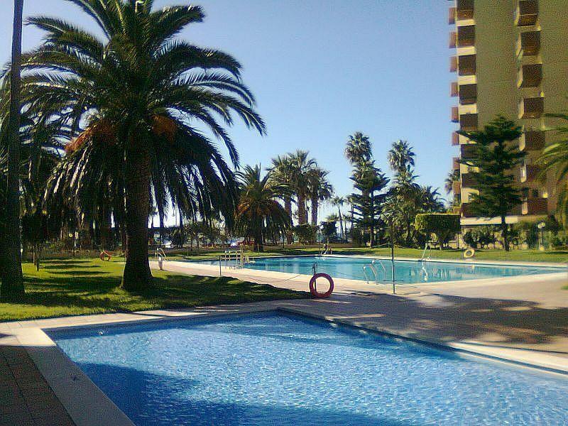 Piscina - Apartamento en alquiler de temporada en Almuñécar - 263764252