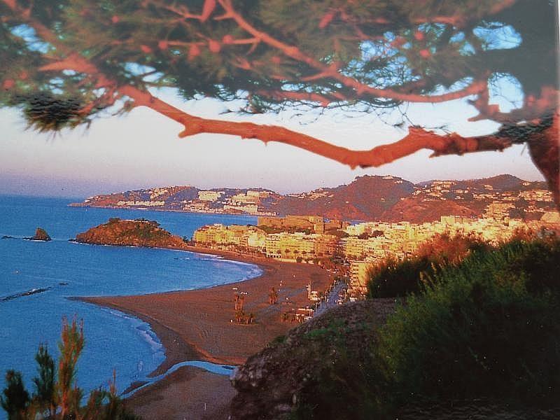 Playa - Apartamento en alquiler de temporada en Almuñécar - 263764294