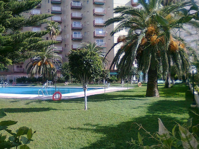 Piscina - Apartamento en alquiler de temporada en Almuñécar - 263764312