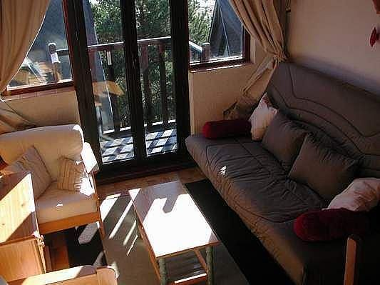 Salón - Apartamento en alquiler de temporada en Les Angles - 325446814