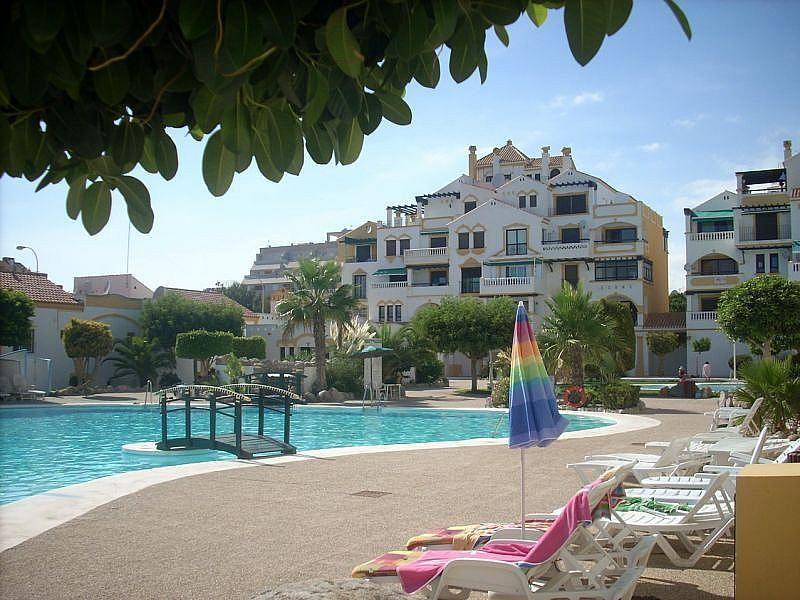 Piscina - Apartamento en alquiler de temporada en Roquetas de Mar - 389472022