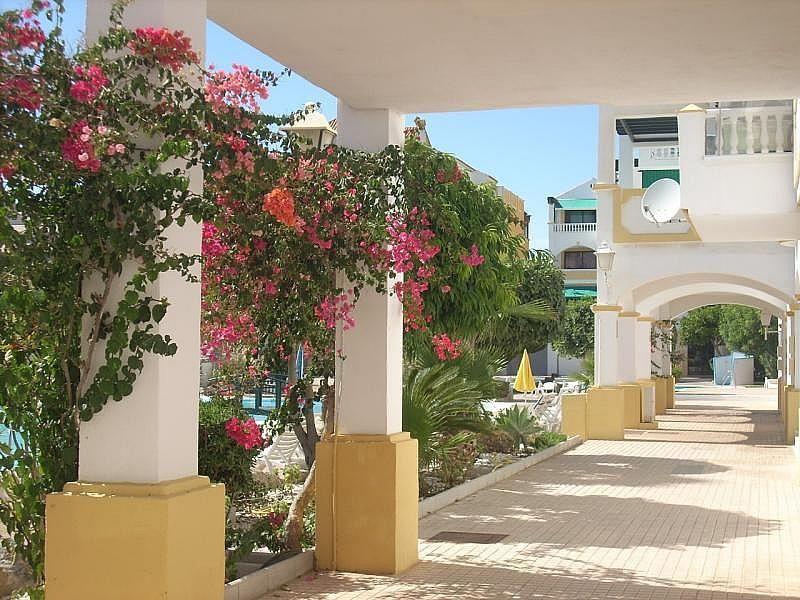 Entrada - Apartamento en alquiler de temporada en Roquetas de Mar - 389472028