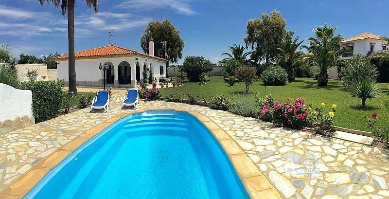 Piscina - Casa en alquiler de temporada en Conil de la Frontera - 387059243