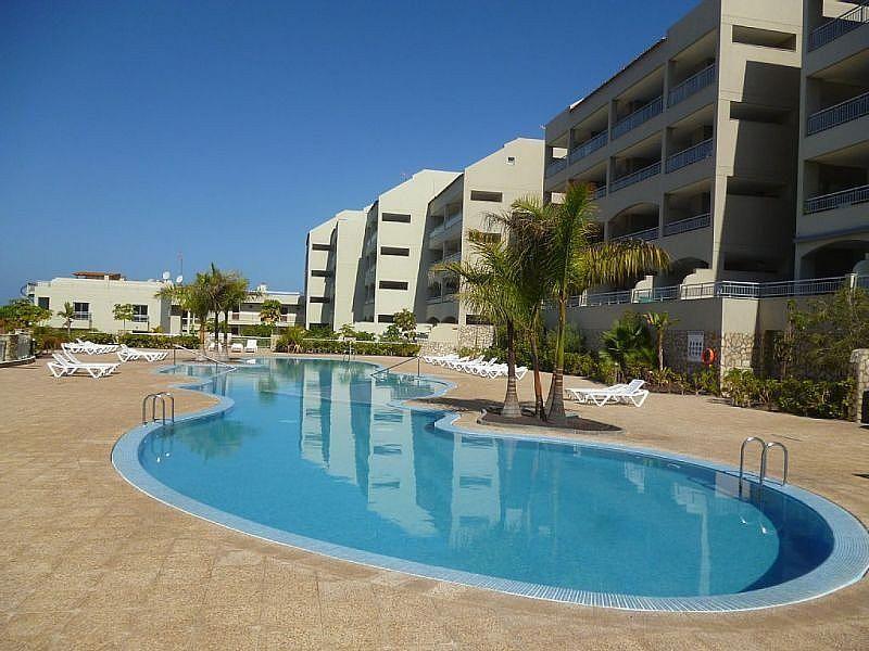 Piscina - Apartamento en alquiler de temporada en Playa de las Américas - 259056098