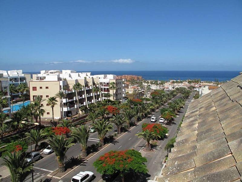 Vistas desde la terraza - Apartamento en alquiler de temporada en Playa de las Américas - 259056134