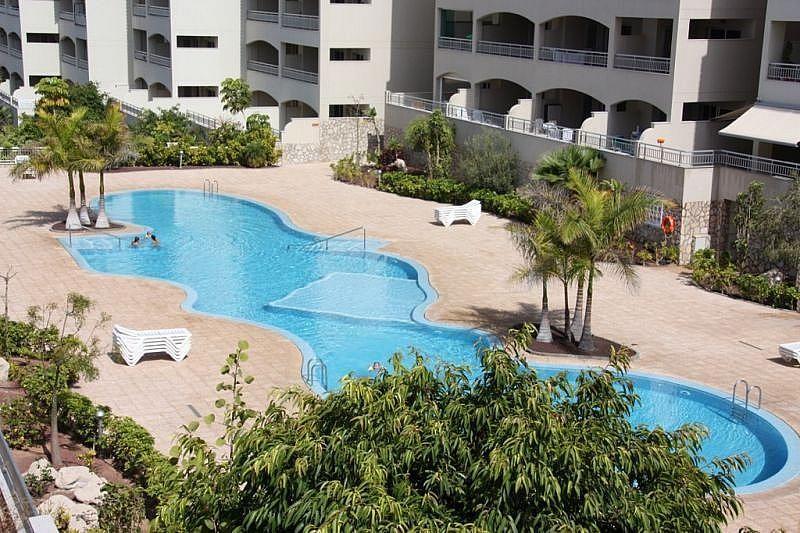 Piscina - Apartamento en alquiler de temporada en Playa de las Américas - 370557253
