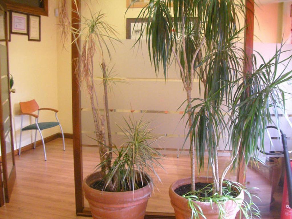 Estudio en alquiler en San Bernardo en Salamanca - 358756524