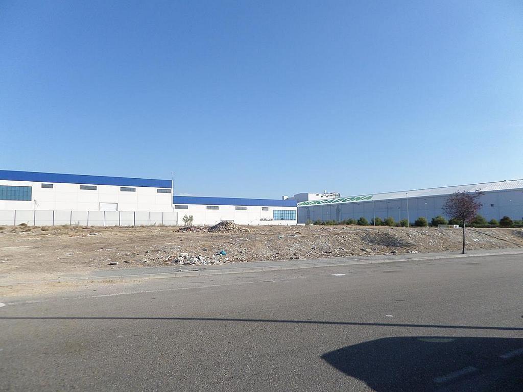 Nave industrial en alquiler en Ciempozuelos - 216192981