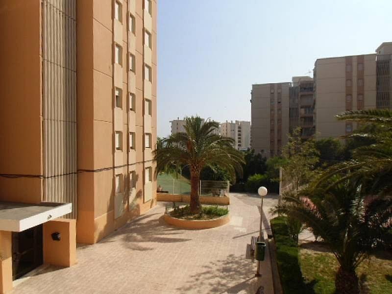 Foto - Apartamento en alquiler en calle Urbsainvi, Villajoyosa/Vila Joiosa (la) - 261815277