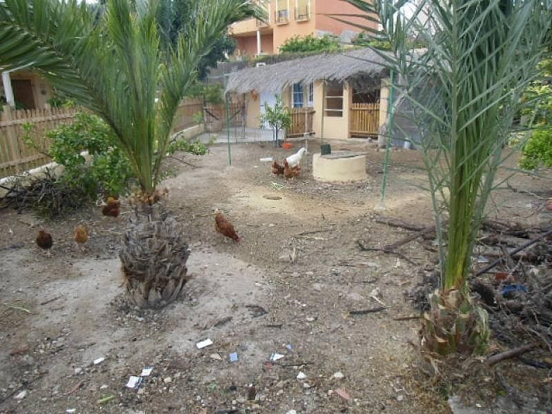 Foto - Chalet en alquiler en calle Urbermita de San Antonio, Villajoyosa/Vila Joiosa (la) - 196296076